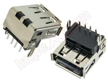 Conector USB Notebook